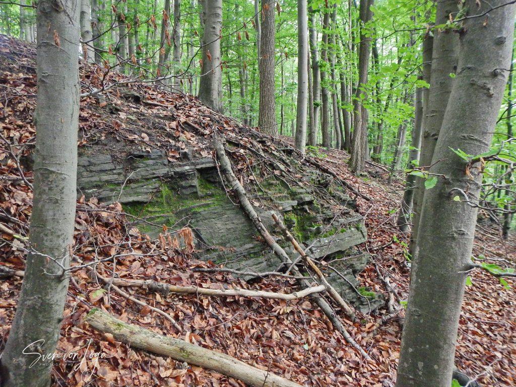 Klutertberg Ennepetal Kalksteinschichten
