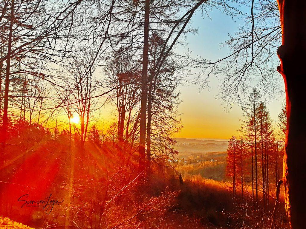 Sonnenaufgang am Oelberg