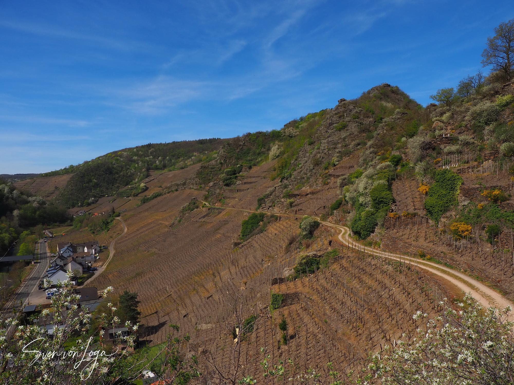 Schroffe Felsenlandschaft über Mayschoß an der Ahr