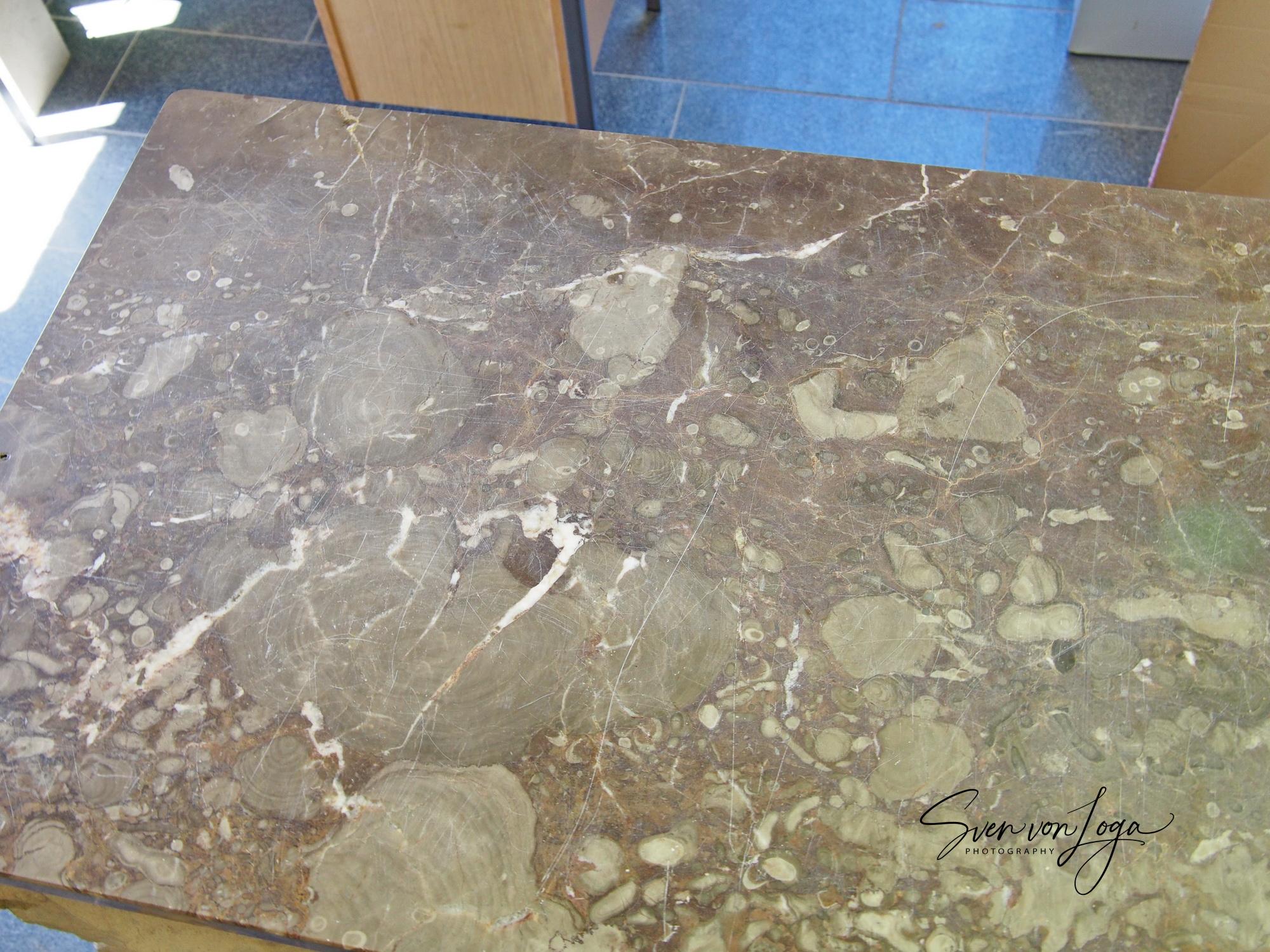polierte Stromatoporenplatte