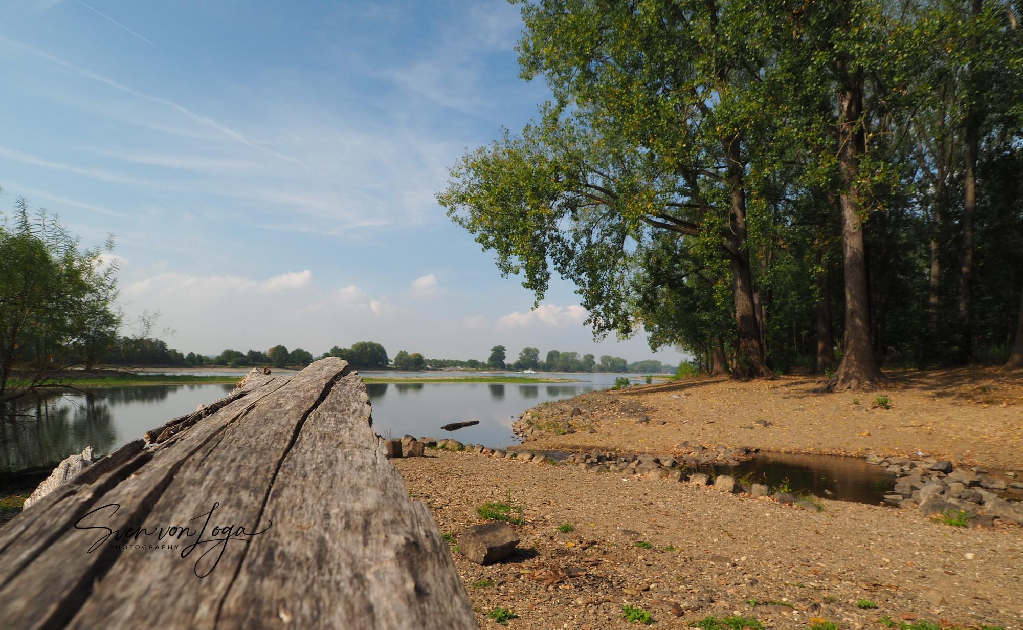 Wo die Sieg in den Rhein fließt – der Film
